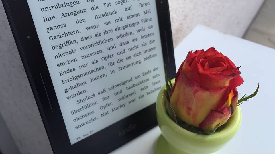 Piraterie: Geklaute E-Books kosten Verlage und Autor*innen 300 Millionen