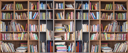 """""""Männerschreck"""": (Diese) Bücher passen nicht zu anziehenden Frauen"""
